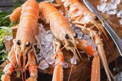 How to Buy, Defrost, Cook, and Serve Langoustines